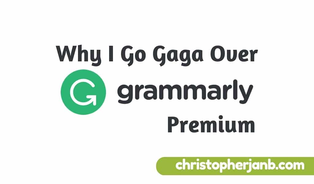 Grammarly Premium Review: Why I Go Gaga Over this Writing Tool 8